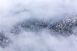foggy-1081934_1280